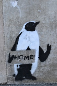 Homing Penguin graffiti